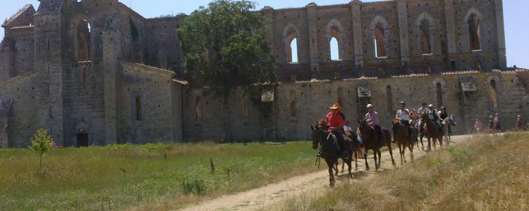 San Galgano horse riding equitazione